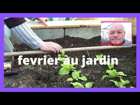 Que faire au jardin en fevrier semer de la ciboule youtube - Que faire au jardin en fevrier ...