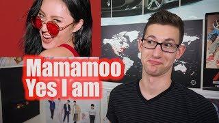 MAMAMOO - Yes I am MV Reaction