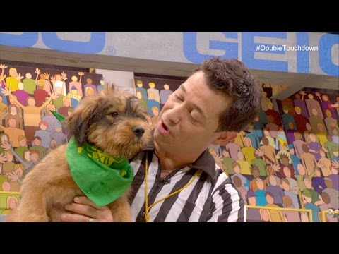 Star of the Puppy Bowl Scores a Double Touchdown | Puppy Bowl XII