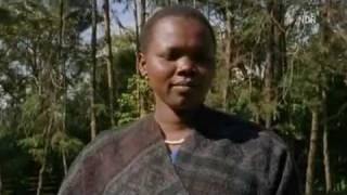 Frauen Genitalverstümmelung 9/9 Frauen ( Nature23 Kanaleingangsvideo schauen)