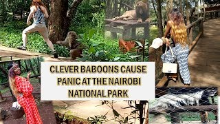 NAIROBI NATIONAL PARK | SAFARI WALK | KENYA SAFARI