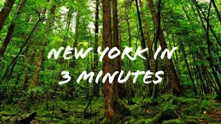 NEW YORK IN JUST 3 MINUTES | ULTRA HD | TIME LAPSE ▶