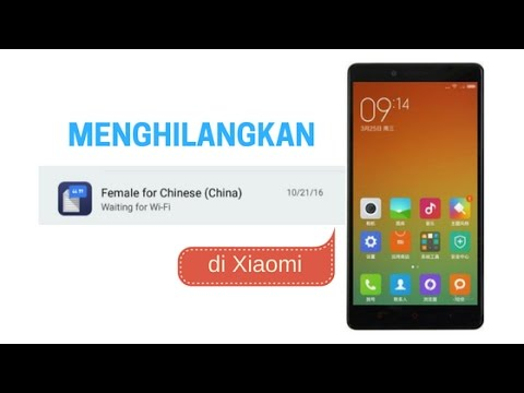 How to remove FEMALE FOR CHINESE (CHINA) Notification in Xiaomi
