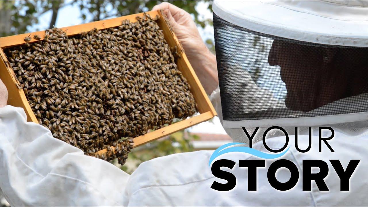 your story backyard beekeeper youtube