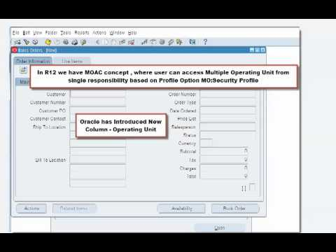 Why Fields In Oracle Order Management Sales Order Form Are