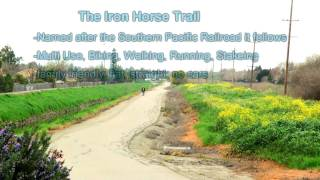 Iron Horse Regional Trail, great things to do with kids in the Bay Area