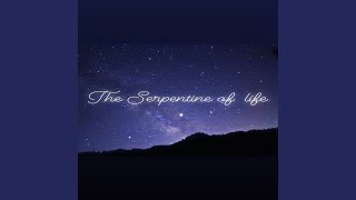 Provided to YouTube by TuneCore Japan Paradise of universe · Hiromi Gotoh The Serpentine of Life ℗ 2020 VHG sounds Released on: 2020-05-31 Composer: ...