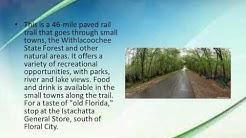 Top 10 Paved Bike Trails in Florida Enjoy Safe Rides