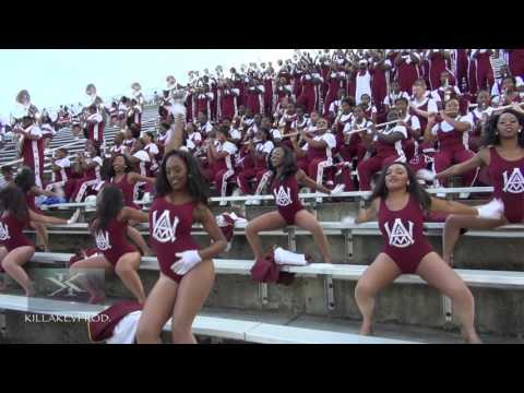 Alabama A&M University Marching Band - Stunna - 2016