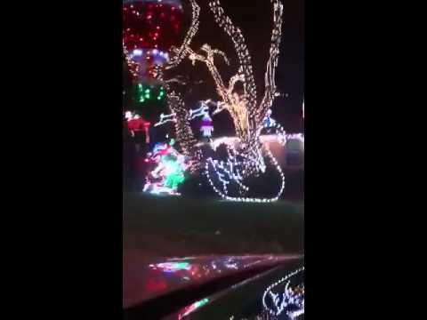 Palm beach lights