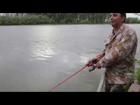 рыба зомби для рыбалки