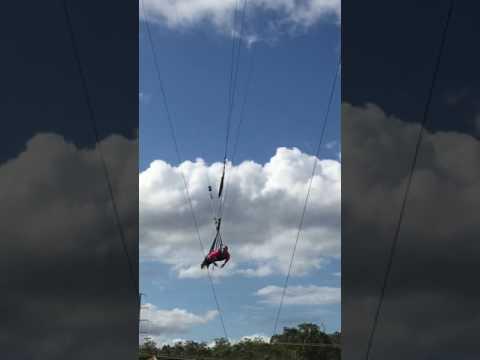 Yüksekten Atlama Avustralya Wet And Wild Lunapark 60+ Metreden Atlama Adrenalin