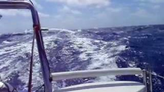 Jaguar catamaran crossing the Gulf of Mexico