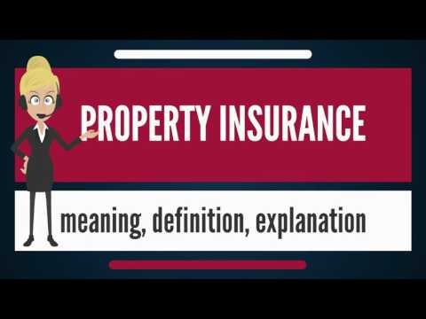 What Is PROPERTY INSURANCE? What Does PROPERTY INSURANCE Mean? PROPERTY INSURANCE Meaning