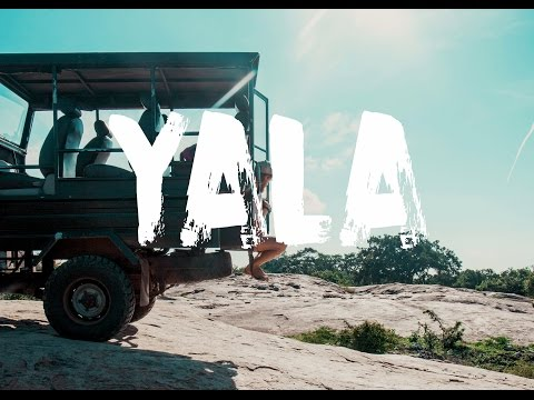 YALA NATIONAL PARK - SAFARI SRI LANKA | VLOG #28