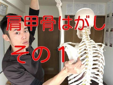 【肩甲骨はがし ストレッチ】肩こりバイバイ!肩甲骨はがしストレッチその1