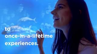 Once In A Lifetime Experiences at Atlantis, The Pa...