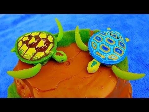 Морские Черепахи. Развивающее видео для детей про черепашек.Робочерепашки Robo Turtle Zuru
