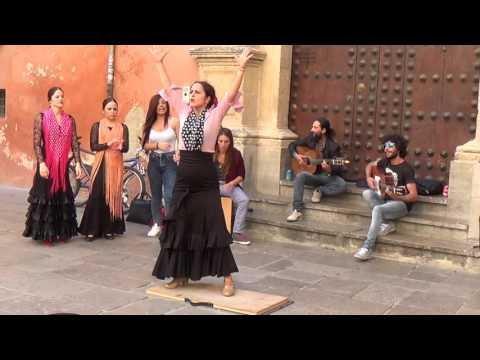 Flamenco dance (1) in Granada 2015