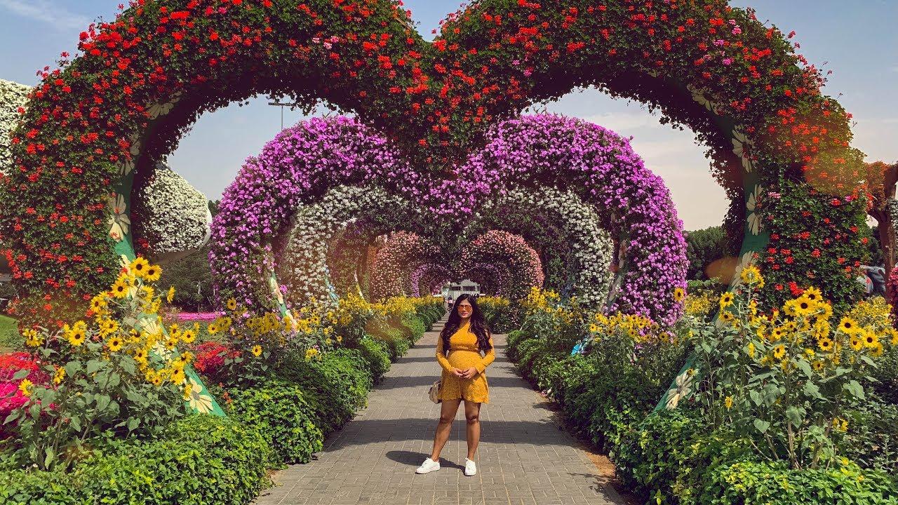 Miracle Garden Dubai 2019 World S Largest Natural Flower Garden Youtube