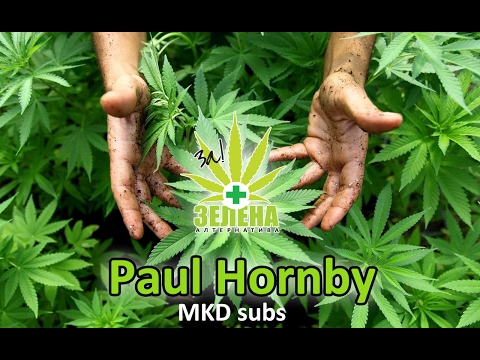 Paul Hornby | MKD subtitle | Demystifying Cannabis in Macedonia 2014