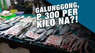 Stand for Truth: Presyo ng galunggong, Php 300 na kada kilo!
