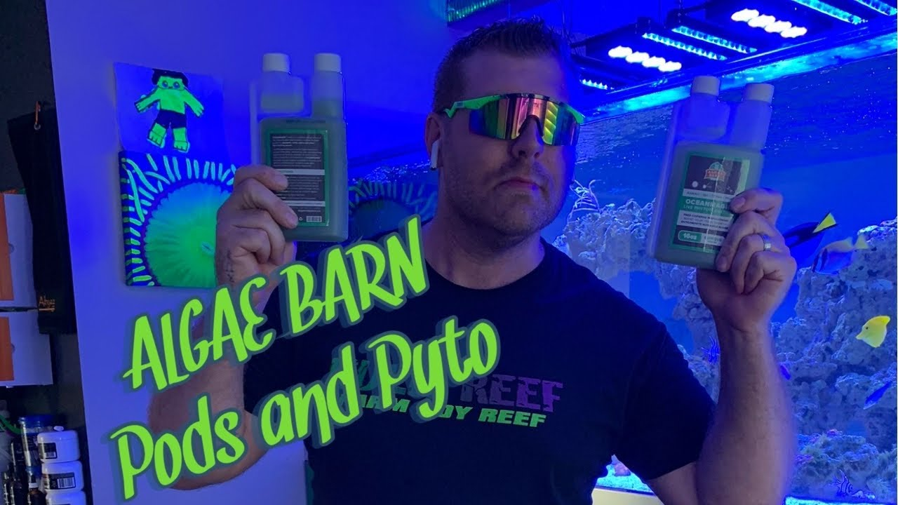 The Best Pods On The Market Subscription Service From Algae Barn Use My Codes and Save That Cash.