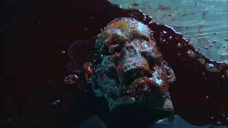 Gore in Movies - from : Laid to Rest & Wrong Turn