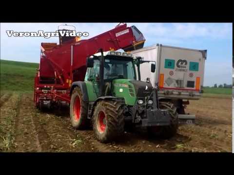 Az agr sartori raccolta patate 2014 fendt grimme for Raccolta patate