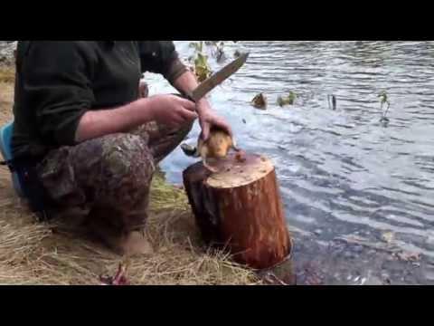 хемчик рыбалка видео