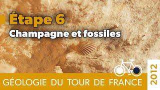 Géologie du Tour de France - Etape 6 - Champagne et fossiles