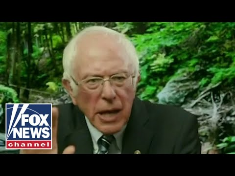 'The Five' react to Bernie Sanders' warning about Biden's message