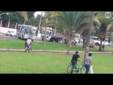 Touro solto descontrolado na Guaicurus deixa duas pessoas feridas