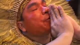 Ritual De Cura Nixi Pae Com Ayahuasca Na Floresta Dos Unicórnios