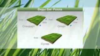 видео Производство стандартного рулонного газона