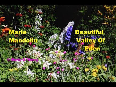 Marie Mandolin ~ Beautiful Valley Of Eden