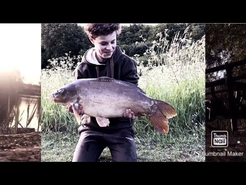 CARP FISHING|CROWSHEALTH LAKES