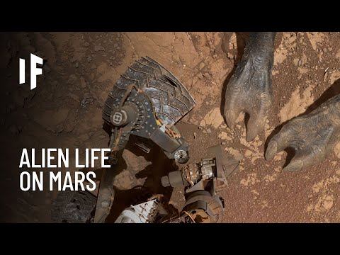 What If We Discovered Alien Life on Mars?