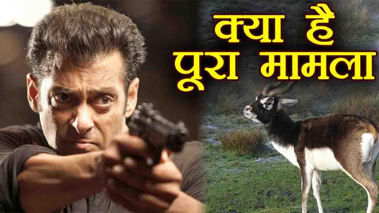 Download Salman Khan पर Jodhpur Court का  फैसला, जानें क्या है Blackbuck Poaching Case । वनइंडिया हिंदी