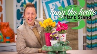 Fyi Guy: Tippy The Turtle Plant Stand