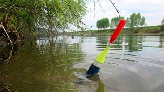 НАГЛОСТЬ БРАКОЯНЬЕРОВ ПОРАЖАЕТ Карась на поплавок и щука на спиннинг часть 2