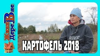 Сбор картофеля у ТЁЩИ 2018 ЖИЗНЬ В ДЕРЕВНЕ