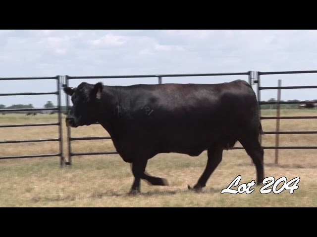 Pollard Farms Lot 204