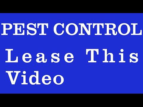 Pest Control National City | 206-456-1642 | Call Now, Best Pest Control National City, CA