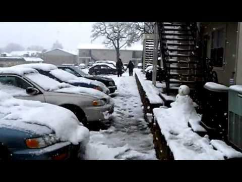 Dallas Texas - Beautiful Snow in Denton by University of North Texas - Tourism USA