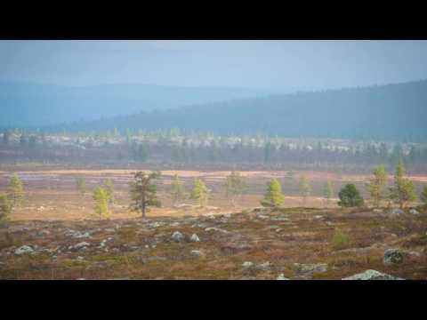 One Health Finland background slideshow