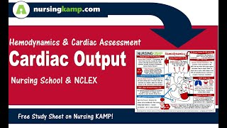 What is Cardiac Output ICU Nursing KAMP CO Causes NCLEX Nursing Student 2019