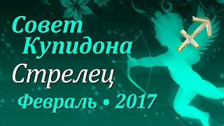 Стрелец, совет Купидона на февраль 2017. Любовный гороскоп.