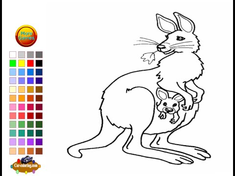 Kangaroo Coloring Pages For Kids Kangaroo Coloring Pages YouTube