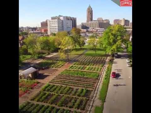 Urban farm in Detroit agrihood